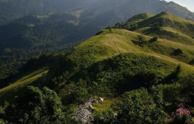 La réserve naturelle de la Haute Chaîne du Jura